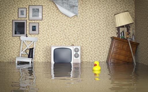 Room half underwater from a flood with a floating toy duck
