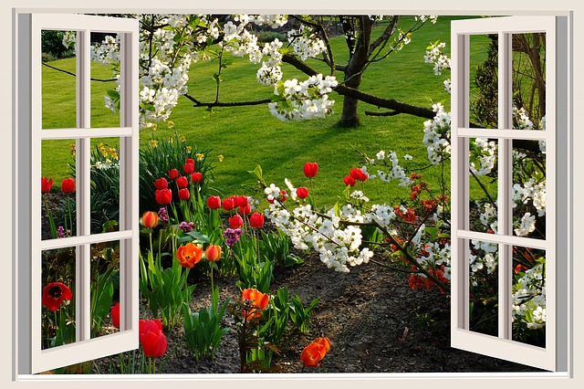 Open window to garden