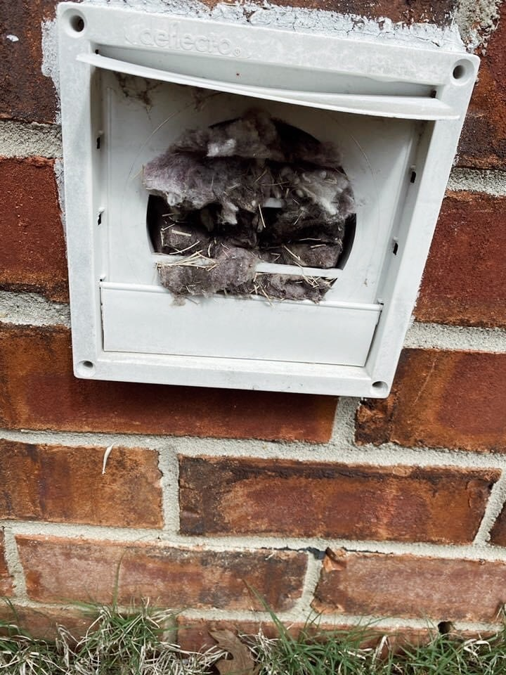 6 Signs You Need to Clean Your Dryer Vent ASAP